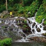 صورة فوتوغرافية لـ Sekumpul Waterfalls