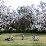 ภาพถ่ายของ Seoul Children's Grand Park