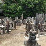 現皇室の祖、「光格天皇」。そして「源氏物語」が書かれた由緒あるお寺です!