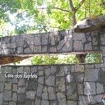Parque Zoobotanico Arruda Camara照片