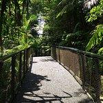 ภาพถ่ายของ Penang Hill