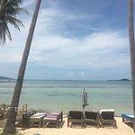 Koh Tan Photo
