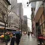 La 5th Avenue vista dall'uscita dell'hotel guardando a destra verso Central Park