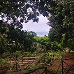 Photo of Le Jardin Du Roi Spice Garden