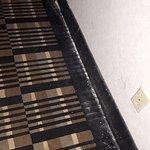 carper disgusting in the hallways