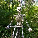 One of many skeletons in the park