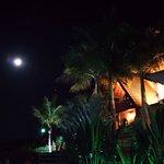 Mr. Tugas em noite de lua cheia...