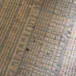 Again, typical of the property. Stains on an old carpet.