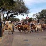 Real Feel of Texas