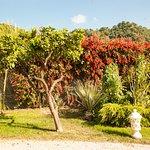 Alcantara Resort Foto