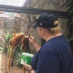 Adelaide Zoo Φωτογραφία
