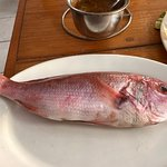 Fresh red snapper ready for my dinner