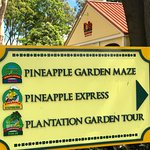 Add the Pineapple Garden Maze, Pineapple Express Train, or the Plantation Garden Tour to Your To