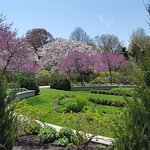 Grounds in May