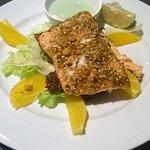 Dukkah crusted salman and citrus salad with wasabi mayo