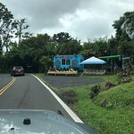 Foto de Hana Highway - Road to Hana