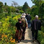 Το Σπίτι και οι Κήποι του Κλωντ Μονέ Φωτογραφία