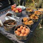 Foto van Chitwan Jungle Safari