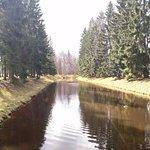 Ораниенбаум (Верхний парк) П-образный пруд