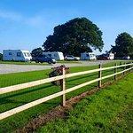 Welltrough Hall Farm Caravan: pitches