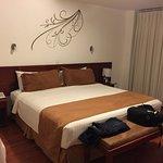 Hotel Ajavi