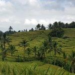 Bali Driver Seminyak - Private Day Tours Φωτογραφία