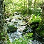 Camino del Agua