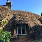 Dorset Day Trips Resmi