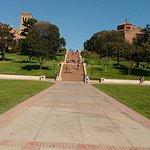 Foto de University of California, Los Angeles (UCLA)