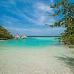 Cruise Ship To Shore Roatan Tours