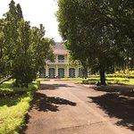 Photo of Le Jardin de Pamplemousse