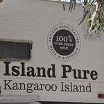 Foto de Island Pure Sheep Dairy