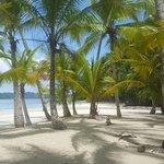 Foto de Panama Dive Center