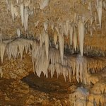 Barbados Sightseeing Tour: Harrison's Cave, Bathsheba and Welchman Hall Gully