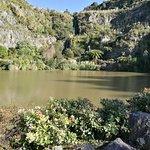 Whangarei Quarry Gardens Foto