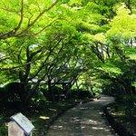 Zdjęcie The Tale of Genji Museum