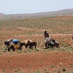 Bilde fra Around Morocco -  Day Tours