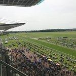 York Racecourse照片