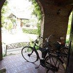 Φωτογραφία: Karanganjar Coffee Plantation