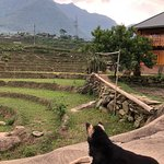 Our trek and homestay in Sapa.