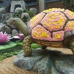 turtle in flowers
