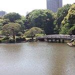 Shinjuku Gyoen National Garden Photo