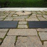 Foto de Arlington National Cemetery