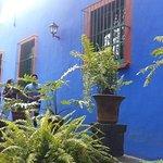 Photo de Musée Frida Kahlo