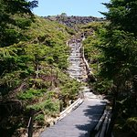 Photo of Kitayatsugatake Rope Way