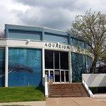 front of & entrance to the Aquarium of Niagara