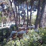 Restaurant Bahçesi