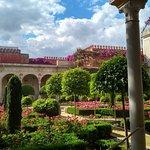 Jardin grande II