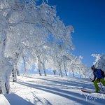Ski Touring in Hakuba, Japan.  January 2016.  Photo: Yuji Akiyama