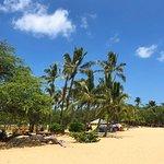 Maui Adventure Cruises Φωτογραφία